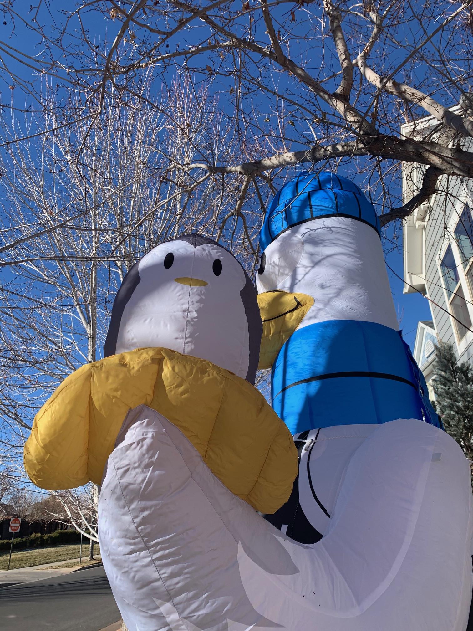ACC20-1207 Arctic Seagulls - Custom Inflatable 2